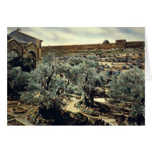 Vintage Garden of Gethsemane Jerusalem Israel Greeting Card
