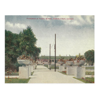 Vintage Garfield Park Chicago Illinois Postcard