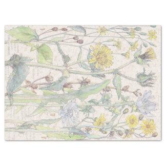 Vintage Gasteria Wildflower Flowers Tissue Paper