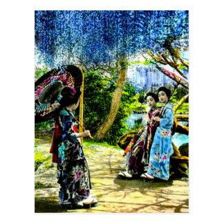 Vintage Geisha in Wisteria Garden Old Japan Postcard