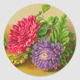 Vintage Gerber Daisy Classic Round Sticker