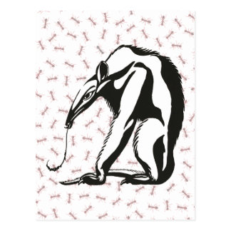 Vintage Giant Anteater by Marcus Behmer Postcard