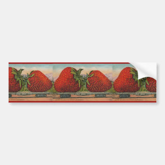 Vintage Giant Strawberries Car Bumper Sticker