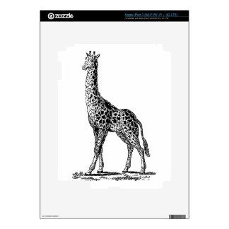Vintage Giraffe, Black Lineart Illustration Decal For iPad 3