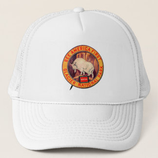 Vintage Glacier National Park See America First Trucker Hat