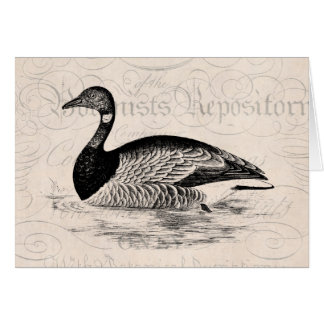 Vintage Goose Illustration -1800's Geese Template Greeting Card