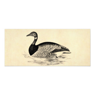 "Vintage Goose Illustration - 1800's Geese Template 4"" X 9.25"" Invitation Card"