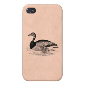Vintage Goose Illustration -1800's Geese Template iPhone 4/4S Case