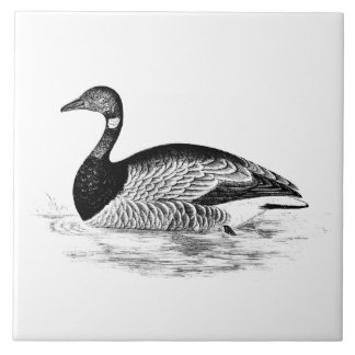 Vintage Goose Illustration - 1800's Geese Template Tile