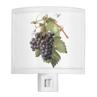Vintage Grape Image Night Light