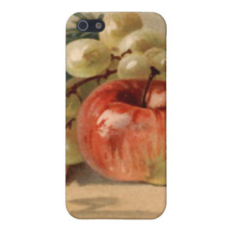 Vintage Grapes and an  Cover For iPhone SE/5/5s
