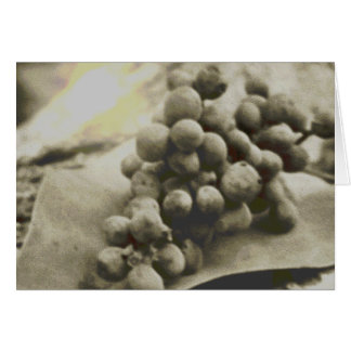 Vintage Grapes Card