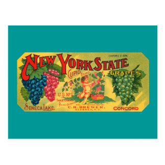 Vintage Grapes Crate Art Blank Postcard