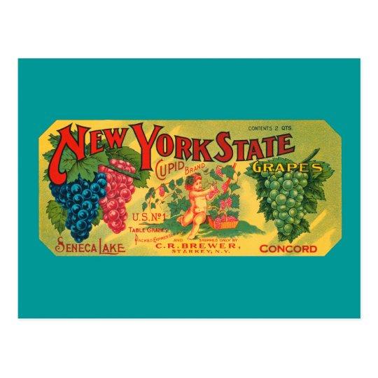Vintage Grapes Crate Art Blank Postcard