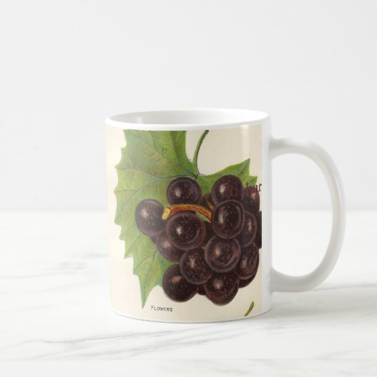 Vintage Grapes Mug