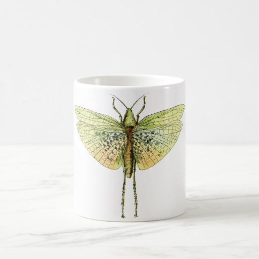Vintage Grasshopper Print Mugs