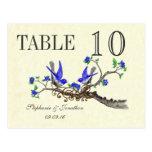 Vintage Gray Bird Royal Blue Blossoms Table Number Postcard