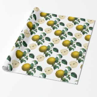 Vintage Green Apple Botanical Illustration Wrapping Paper