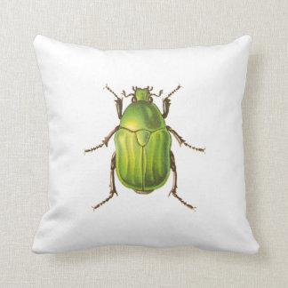 Vintage Green Beetle Illustration Pillow