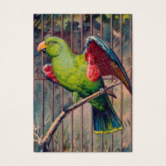 Vintage Green Parrot Print Business Card