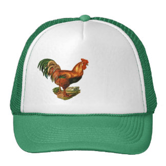 Vintage Green Tail Feathers Rooster Cockerel Trucker Hat