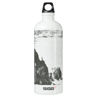 Vintage Greenland, out with the dogs Water Bottle