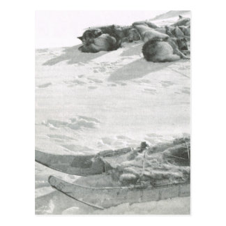Vintage Greenland, Well earned rest Postcard