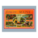 Vintage Greetings From Maine Postcard