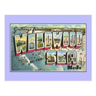 Vintage greetings from Wildwood by the Sea NJ Postcard