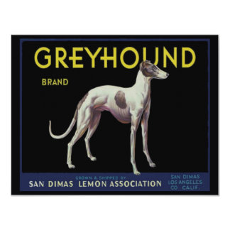 Vintage Greyhound Lemon Label Circa 1920 Card