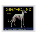 Vintage Greyhound Lemon Label Circa 1920 Print