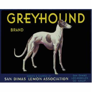 Vintage Greyhound Lemon Label Circa 1920 Statuette