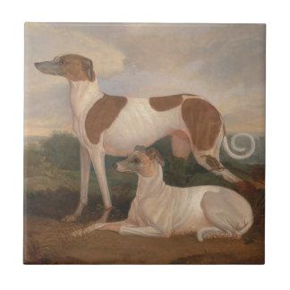 Vintage Greyhounds Ceramic Tile