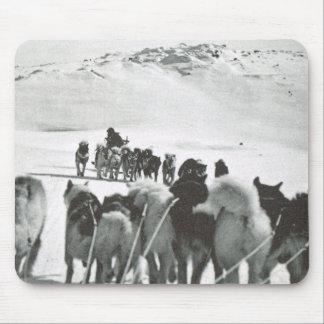 Vintage Groenlandia, equipos árticos del perro Alfombrilla De Ratón