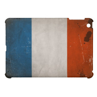 Vintage Grunge France Flag Cover For The iPad Mini
