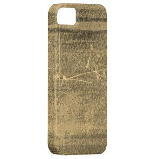 Vintage grunge texture wall background iPhone SE/5/5s case