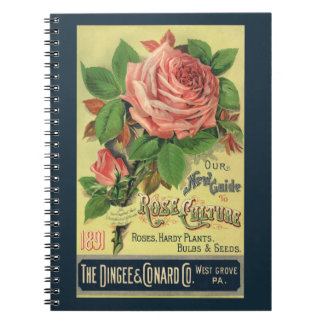 Vintage Guide to Rose Culture Book Cover Art, 1891