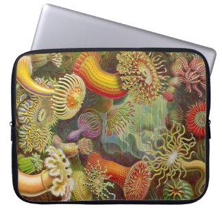 Vintage Haeckel Anemones Computer Sleeves