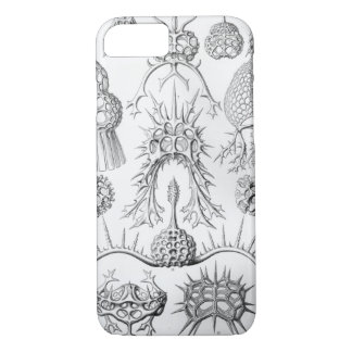 Vintage Haeckel iPhone 8/7 Case