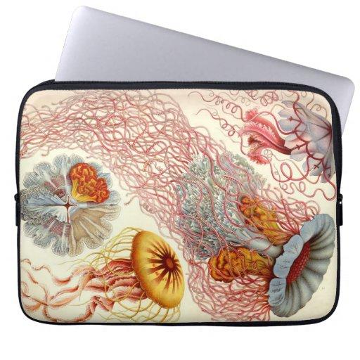 Vintage Haeckel Jellyfish Laptop Computer Sleeve