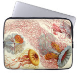 Vintage Haeckel Jellyfish Laptop Sleeves