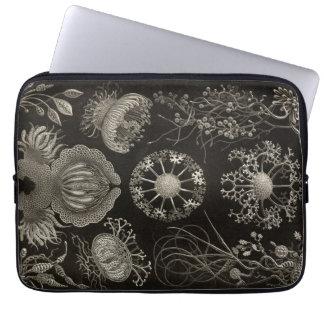 Vintage Haeckel Laptop Computer Sleeve