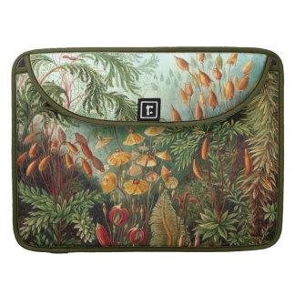Vintage Haeckel Moss Art Sleeve For MacBooks