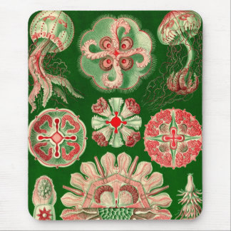 Vintage Haeckel Mouse Pad