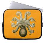 Vintage Haeckel Octopus Computer Sleeve