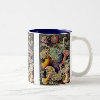 Vintage Haeckel Sea Anemone Two-Tone Coffee Mug