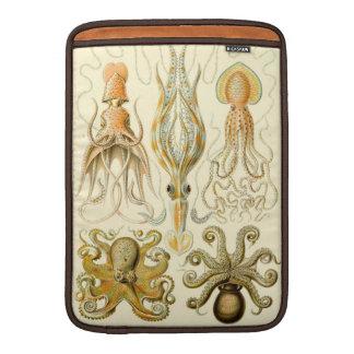 Vintage Haeckel Squid & Octopi MacBook Sleeves