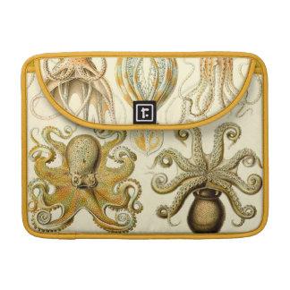 Vintage Haeckel Squid & Octopi Sleeve For MacBooks