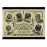 Vintage Hair Cutting Chart (1884) Post Card