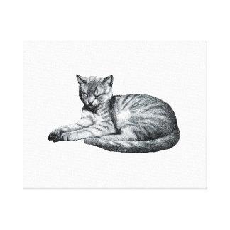 vintage half asleep cat animal sketch canvas print
